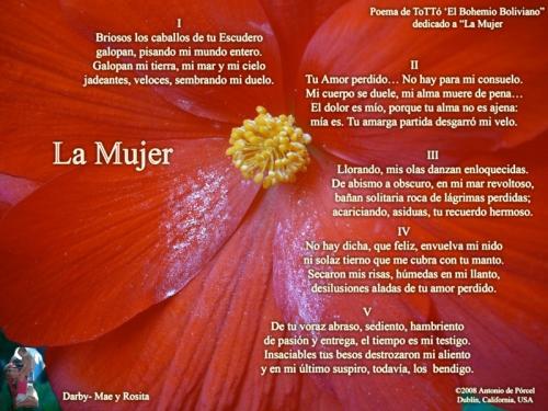 Imagen el 8 de marzo se celebra el dia de la mujer - grupos.emagister