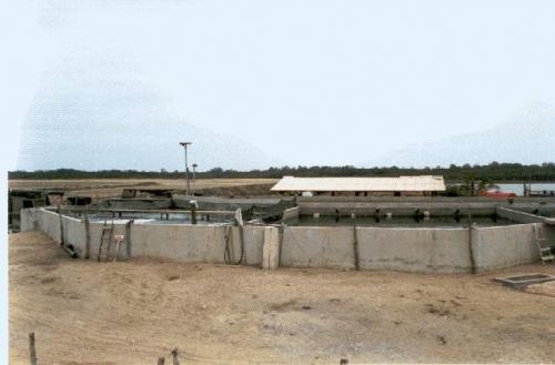 Imagen estanque de concreto donde se realiz el for Estanque de concreto