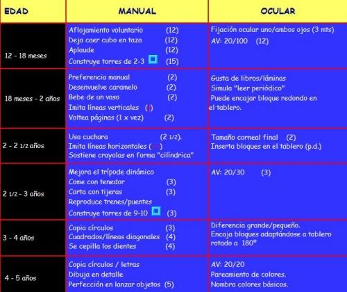 L�mina Desarrollo Psicomotor: Etapa Prescolar_Primera Infancia